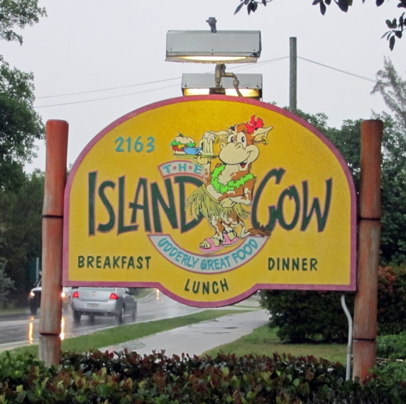 The Island Cow