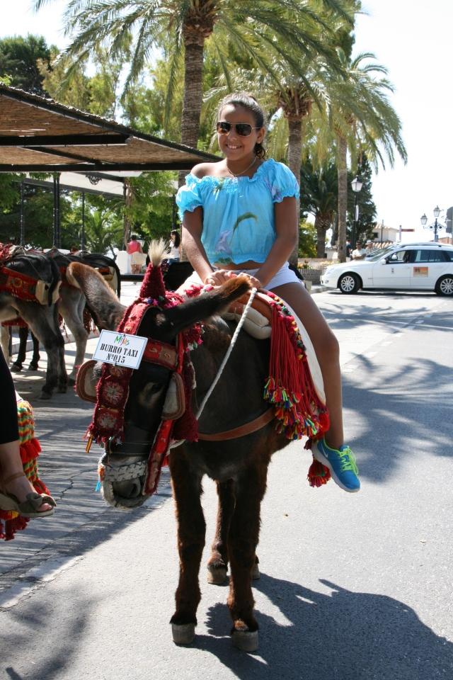 Donkey Taxi Ride