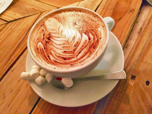 Hot chocolate with mini marshmellows...